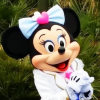 Thumbnail image for Public Gold Tokyo Trip – Hari Terakhir (Disney Sea)