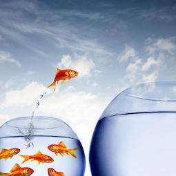 Post image for Kejayaan Adalah Tentang Cara Berfikir